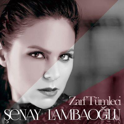 eniyi-album-senay-lambaoglu